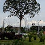 árvore na entrada do parque