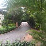 Fairmont Mayakoba: Luxury, nature and serenity beyond your imagination
