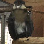 National Zoological Park Foto