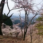 Foto de Mt. Yoshino