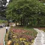 清境小瑞士花园照片