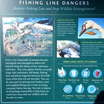 about fishing line