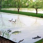 a mural of the trout farm in the Hidden Oaks Nature Center