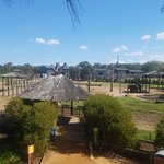 صورة فوتوغرافية لـ Taronga Western Plains Zoo