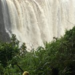 PaDi the traveling duck by the Main Falls