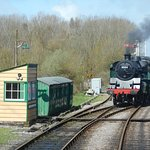 The Standard tank engine runs round to the front of the train at Norden.