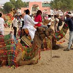 Foto de Pushkar Camel Fair
