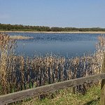 Photo of Potteric Carr Nature Reserve