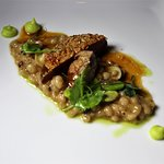 PIGEONNEAU (Roasted Breast with Oats Confit Legs, Barley Risotto Fava Bean-Savory Coulis)