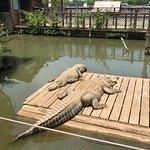 Foto de Natchitoches Alligator Park