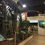 The Dinosaur Store Adventure Zone照片