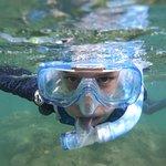 Reef Sprinter Photo