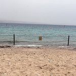 Photo of Coral Beach Nature Reserve