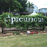 Epicurious Gardens - full of herbs, plants and vegetables