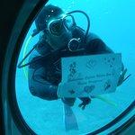 Submarine Safaris Photo