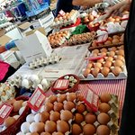 uova di tutti i tipi: da bere, da allevamento a terra, di quaglia, ecc.