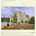 Web Page Claiming 20,000 Tulips at Hever ... at Best only about 2,000 Blooms