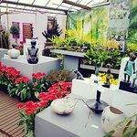 Photo of Floralia - Spring Flower Show