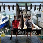 Amberjack and tuna. This is not actually our entire catch. Several tuna were already being clean