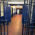 Gloucester cells