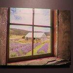 Φωτογραφία: Port Arthur Lavender Farm · Tourist Attraction