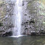 Foto de Manoa Falls