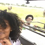 21st April,2018 Mikumi National Park Safari (Day trip)