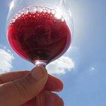 Step 1 in wine tasting - See the wine.