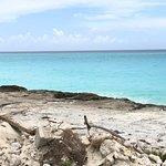Photo de Miami Seaplane Tours