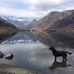 Donald Dubh taking in the scenery at beautiful Loch Coruisk