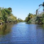 Lagoon from kayak