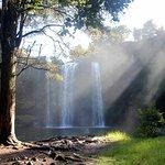 Whangarei falls viewed from the bottom. Sun lighting up the spray.