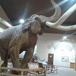Photo de Mammoth Site of Hot Springs
