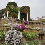 Beautiful miracle garden