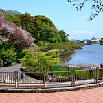 Rengejiike Park