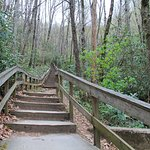 Stairs at start of trail