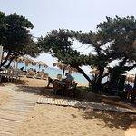 Terraza junto a la playa y entre sabinas