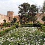 Oudaya garden