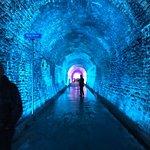 Alice in Wonderland Tunnel