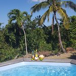 Coeur Caraibes Photo