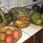SOme of our local fruits such as mangoes, sour-sop, papaya, plantain and sugar apple.