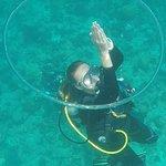 Diving Bluetribe Moofushi Foto