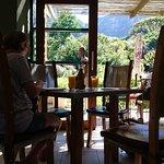 Foto de moyo Kirstenbosch