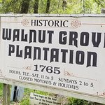Photo de Walnut Grove Plantation