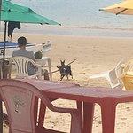 Praia Camurupim