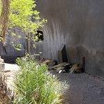 Foto van Phoenix Zoo