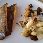 Sea Bass with gnocchi, cashews and eggplant with a lemon sauce