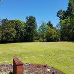 Foto van Airlie Gardens