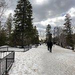 Foto de Parc de la Chute-Montmorency