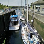 A lot of boats of all sizes, and fish, pass through here. Here they enter at the lower lock leve